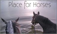 rs2Place for Horses